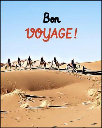 Use Bon Voyage
