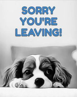 Use Sorry you're leaving - dog