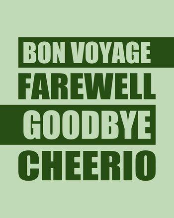 Use Bon voyage, cheerio, farewell
